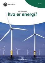 Lesedilla: Kva er energi?, nynorsk (9788211023148)